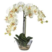 "Nearly Natural Arrangement - Orchid White (18"")"