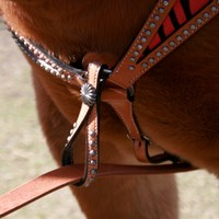 Teskey's Saddle Shop: Teskey's Concho Tiedown Keeper -Teskey's