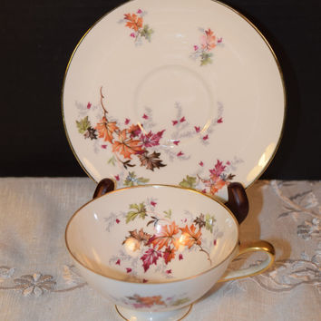 Chalfonte Indian Summer Coffee Cup & Saucer Vintage Saladmaster Indian Summer Bavaria Coffee Cup Saucer Discontinued China Replacement