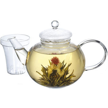 Glass Teapot Stove Top Water Boiler Kettle with Infuser