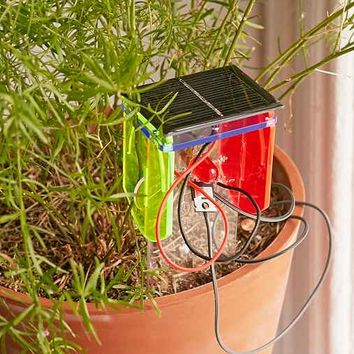 Technology Will Save Us Thirsty Plant DIY Kit