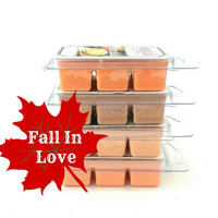 FALL Wax Melt - 4 pack - soy wax melts - soy wax tarts - wax melt warmer - pumpkin candle - thanksgiving decor