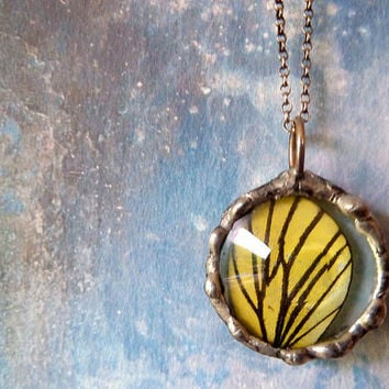 Butterfly Wing Necklace. Sterling Silver Chain. Natural History. Woodland Butterfly Jewelry