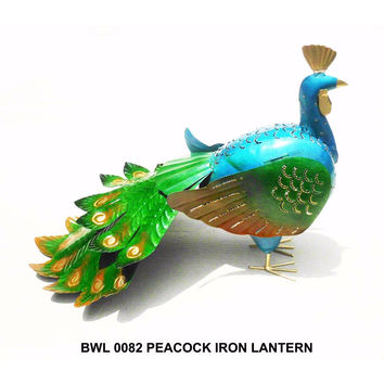 D Art Collection Peacock Iron Lantern
