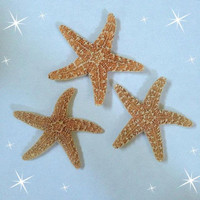 Ariel Inspired Starfish Hair-Clip