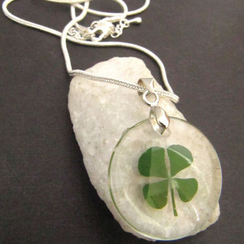 Real Four Leaf Irish Clover Pressed Silver Shamrock Necklace