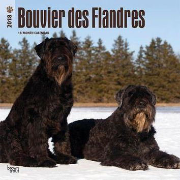 Bouvier des Flandres Wall Calendar, More Dogs by BrownTrout