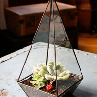 Obelisk Terrarium //made with recycled glass// by megamyers