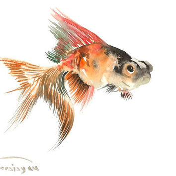 Goldfish, Original watercolor painting, 9 X 12 in, aquarium fish art, aquarium fish
