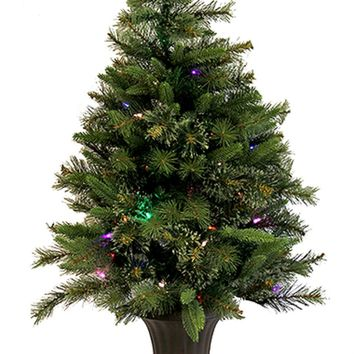 6.5' Pre-Lit Orchid Pink Cedar Pine Artificial Christmas Tree Clear Lights