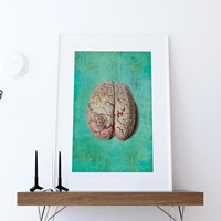 Vintage Victorian Pathology Medical Diseased Brain Print Giclee Anatomy Print on Cotton Canvas and Paper Canvas Home Wall Decor