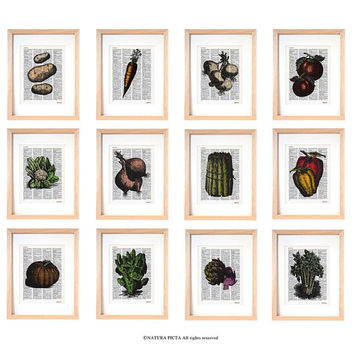 Vegetablewall art set of 12 prints-vintage vegetable dictionary prints-kichen print-botanical print-kitchen wall art-rustic wall art-DP253