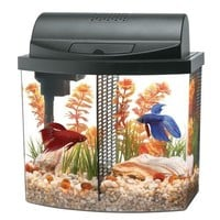 Aqueon Betta Bow Desktop Aquarium LED Kit 2.5 gal