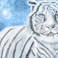 Ethereal White Tiger Stretched Canvas by Susaleena