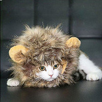 Faux Fur Lion Mane Hats Costume