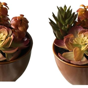 Set of 2 – 6″ Ceramic Potted Artificial Faux Succulent Plants – AIHY3011