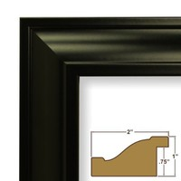 Craig Frames 21834700BK 18x24 Picture/Poster Frame, Smooth Finish, 2-Inch Wide, Black