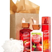 The Daily Trio Gift Kit Suncrisp Apple Harvest