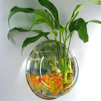Outgeek Wall Plants Tank Wall Hanging Clear Acrylic Vase Flower Plant Pot Aquarium 5.9in