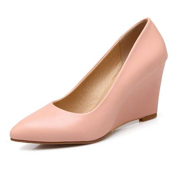 Shallow Mouth Pointed Toe High Heels Wedges Shoes Woman