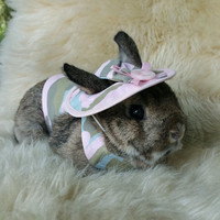Pink camouflage harness , hat and  matching  leash  for your pet bunny rabbit. Made to order