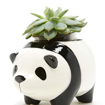 Streamline Panda Planter Pot