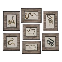 Snakes Under Glass Prints S/7