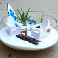 Miniature Beach Garden Escape with Air plants