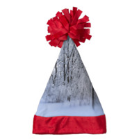 Snowy Forest Santa Hat
