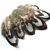 Feathers | Real Bird Feathers| Earrings feather | Millinery Jewelry Crafts supplies| Hair accessories Natural Black White FA04