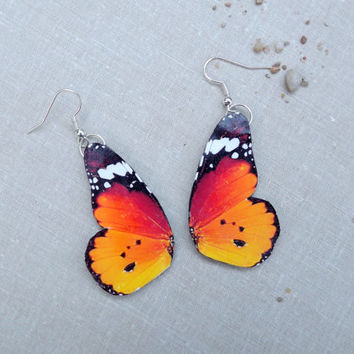African monarch butterfly wing earrings, Monarch butterfly, Butterfly jewelry, Insect jewelry, Butterfly earrings,  Wing jewelry