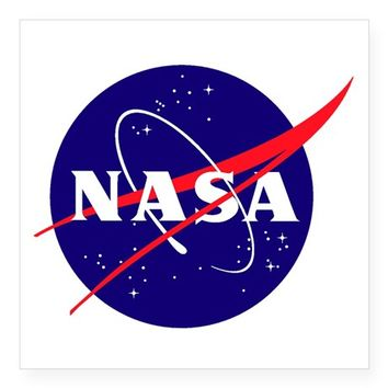 NASA MEATBALL LOGO STICKER