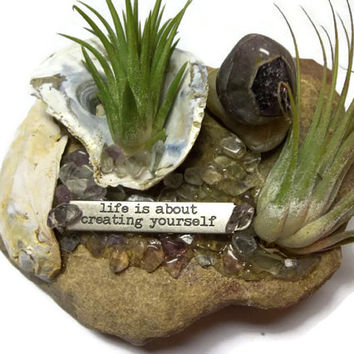 Set of Two Air Plants Living Rock Cairn Zen Garden Chesapeake Bay Natural Stones Inspirational Quote