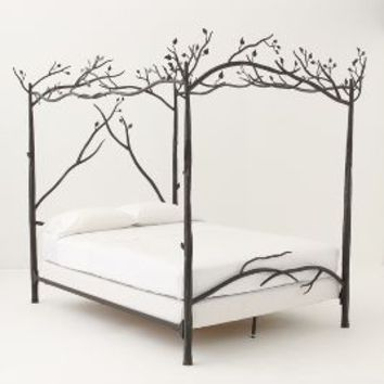 Forest Canopy Bed by Anthropologie