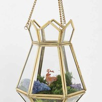 Magical Thinking Hanging Terrarium- Gold One