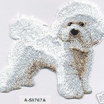 Patch - bichon frise