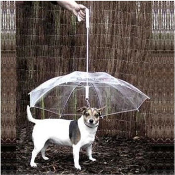 Stylish Design Strong Character Pet's Accessory Pets Dogs Chain Umbrella [6033486721]