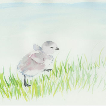 Tiny barnacle goose enjoying summer. Original painting from Finland. Finnish animals. Animal baby art. Unique gift. Original watercolor art.