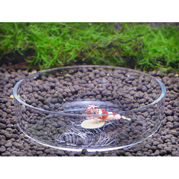 DHDL Acrylic Crystal Red Ornamental Shrimp Feed Dish Aquarium Aquatic Tank Snail Fish Food Feeder Bowl Cup Basin Tray Container