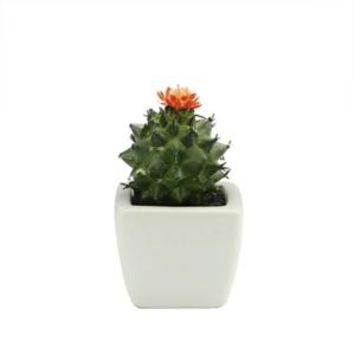 "Walmart: 3.5"" Modern Potted Decorative Artificial Round Green Spiked Cactus Succulent with Orange Flower"