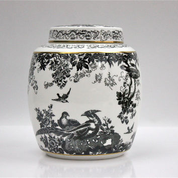 Royal Crown Derby Ginger Jar / Black Aves (Gold Trim) / for Gumps San Francisco