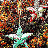 Upcycled Arizona Green Tea Can Star Ornament
