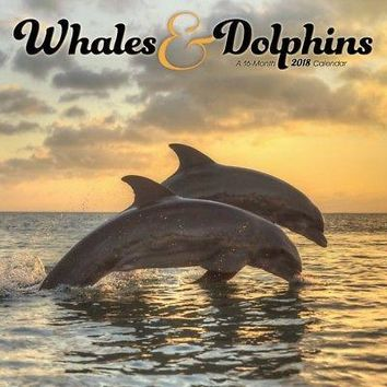 Whales And Dolphins Wall Calendar, Whales | Dolphins by Trends International