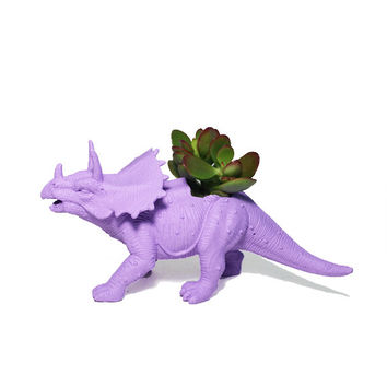 Up-cycled Light Purple Triceratops Planter