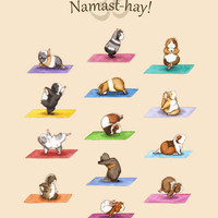 Yoguineas Namast-Hay Poster - The Yoga Guinea Pigs Collection