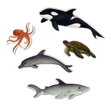 Sea Creatures Magnet Set