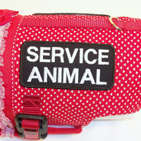 RockinDogs Custom Service Dog HarnessService Animal by Rockindogs