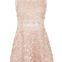 Structured Lace Skater Dress - Nude