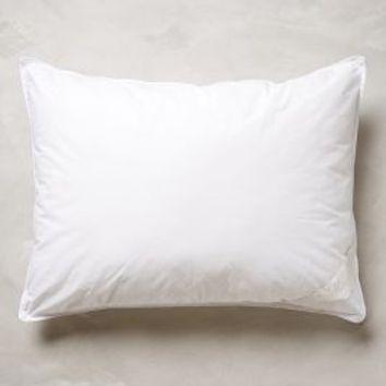Hypoallergenic Down Sham Insert in White