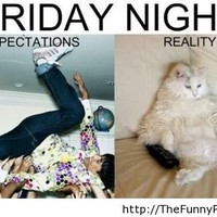 Friday funny pictures - Funny Pictures, Awesome Pictures, ... - inspiring picture on Favim.com
